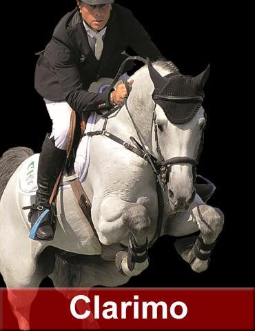 Clarimo - Holsteiner 2003 por CLEARWAY HOLST