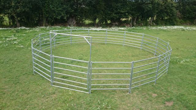 Rond de Longe Australie pour chevaux