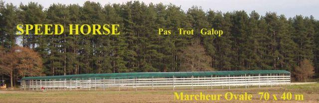 Marcheur Ovale Speed Horse Training jusqu'à 30 chevaux