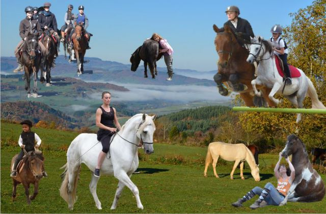 Stage en pension complète cheval et poney