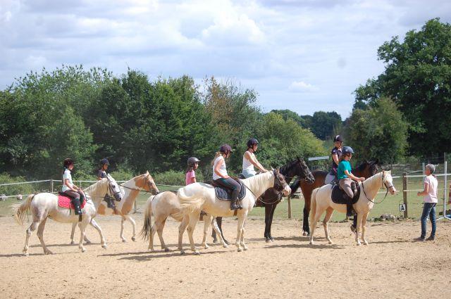Vacances poneys/cheval/enfants
