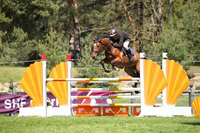 Excellent cheval très concours