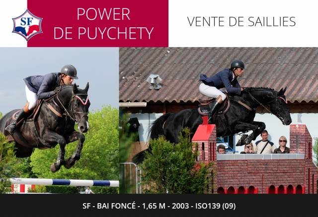 POWER DE PUYCHETY - SF 1,65m 2003 ISO139 (09)