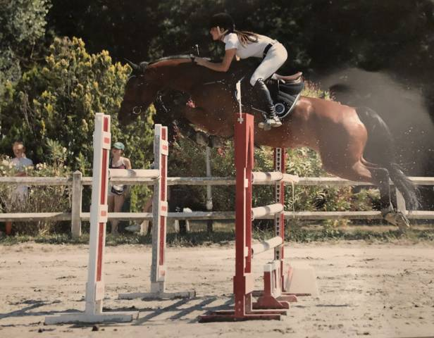 Jument cso 9 ans super potentiel