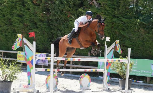 Vends cheval de sport 8ans