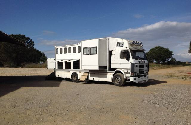Scania 6 chevaux appart double pop-out