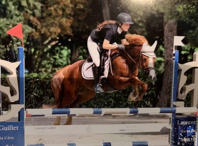 Poney de sport CSO par Machno Carwyn
