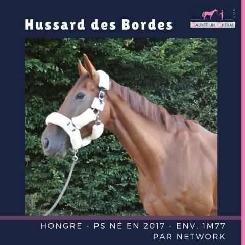 cheval a vendre