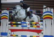 Poney pour Pélite - As Poney 2 - As poney 1