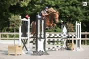 vente poney  D 6 ans ( 144 cm)