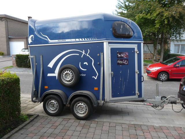 van chevaux occasion a vendre belgique equirodi belgique. Black Bedroom Furniture Sets. Home Design Ideas