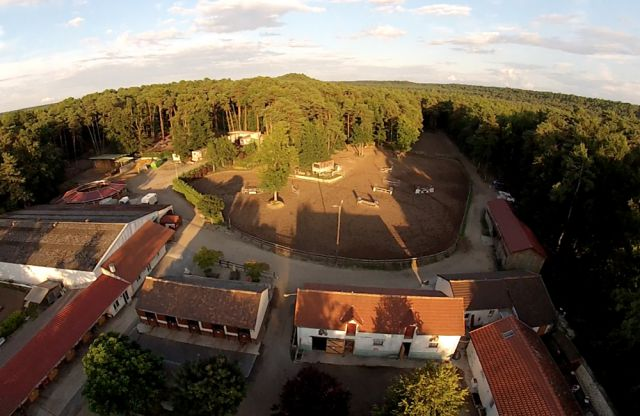 Pension chevaux Fontainebleau Arbonne Équitation