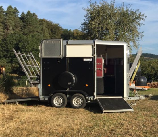 Horse trailer Ifor Williams HB505R 2 Stalls 2002 Used