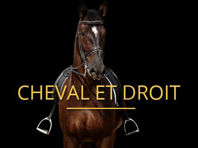 Cheval et Droit - Avocat en Droit Equin