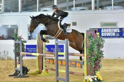 TOP CLASS SHOWJUMPER BY CARDENTO