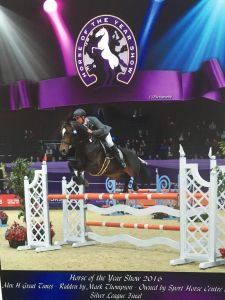 AES  APPROVED TOP SHOWJUMP STALLION