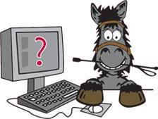 L'agence web du monde du cheval