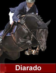 Diarado - Holsteiner 2005 ,  DIAMANT DE SEMILLY SFA