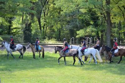 Séjour equitation en drôme provençale