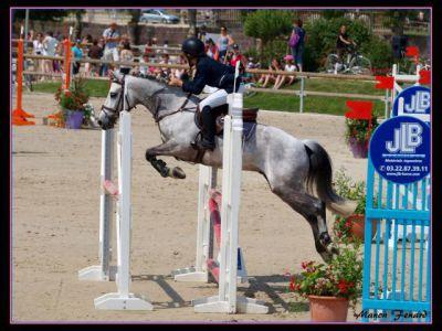 A vendre excellent poney pour p elite