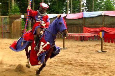 cheval de spectacle