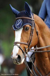 Flexible - Iers sportpaard 1996 ,  CRUISING