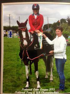 148cm irish showjumping pony