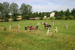 pension chevaux, cadre verdoyant, proche paris