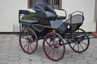 Carriage - Marathon for leisure Dominiak