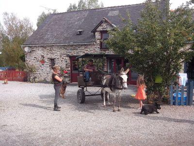 Gîtes avec stages d'équitation et Pêche