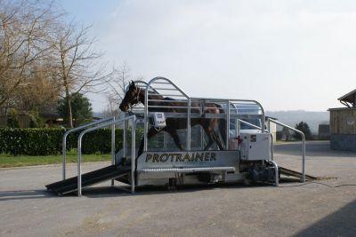 Tapis roulant pour chevaux Protrainer HIPPOCENTER
