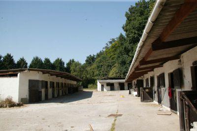 Eure. 60 boxes. 2 maisons. Carrière. Manège. 4,28 ha.