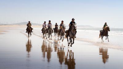 Découverte du Maroc à cheval