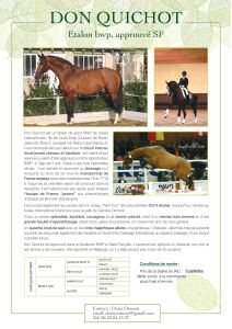 Don Quichot BWP - BWP Belgian Warmblood 2003 by Quite Easy ( Quidam de Revel )