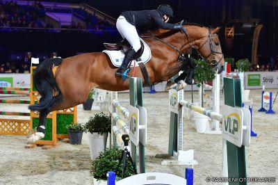 Melvis van de Paspolder - BWP Cavallo da Sangue Belgio 2012 ,  Elvis Ter Putte