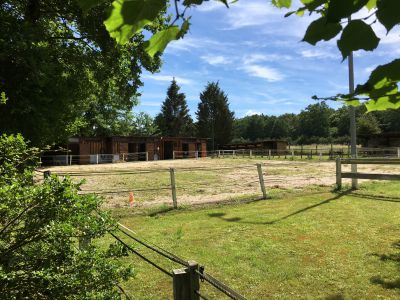 SECTEUR CREVECOEUR - IDEAL CENTRE EQUESTRE/ PONEY CLUB
