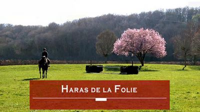 Haras de La Folie - David Thirouin Pensions Maintenon
