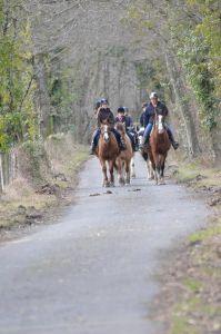 balade randonnée à cheval