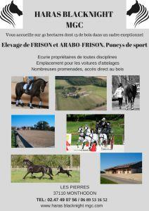 Pensions pour chevaux dans un cadre exeptionnel
