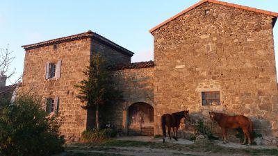 Etape cavalière en Ardèche verte