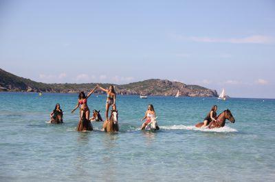 ATE (Accompagnatore Turismo Equestre) - CDD Tempo pieno - Corse-du-Sud Francia
