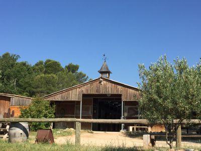 Belle structure pour chevaux