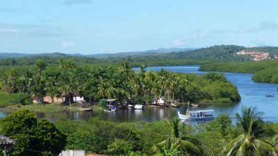 Vente exploitation agricole à Bahia du Brésil
