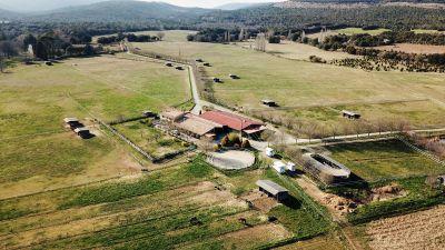 Haras d'élevage sur 53 ha dans le haut var
