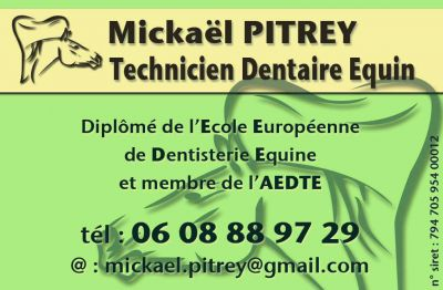 Mickael Pitrey - TECHNICIEN DENTAIRE EQUIN