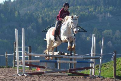 """Stage """"Equitation-Anglais """""""