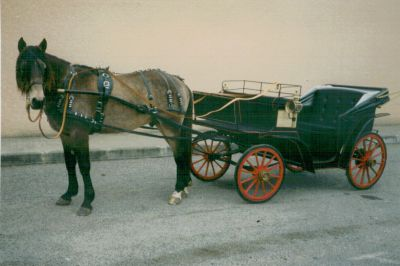 Coche enganches - Calesa
