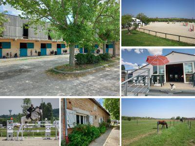 Pension chevaux Toulouse