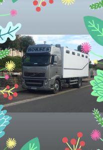 Camion chevaux 9 places