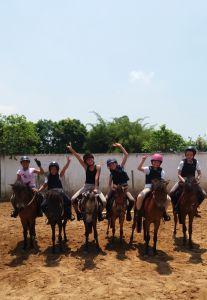 Monitor de equitación - Contrato fijo Tiempo completo -  Vietnam